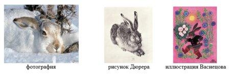 Фотографии и рисунки животных
