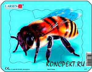 Изображение пчелы