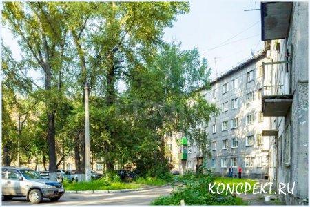 Улица Буркацкого в Новокузнецке