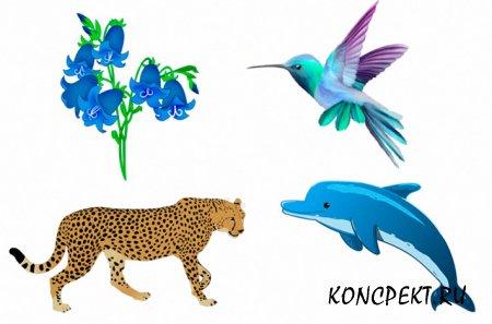 Вопросы о растительном и животном мире