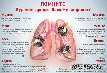 Вредные вещества, содержащиеся в сигаретах