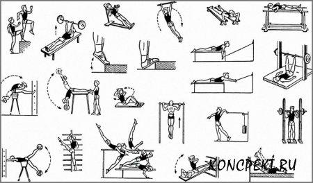 Комплекс упражнений для развития силы у школьников
