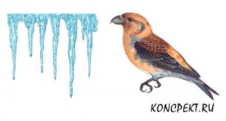Птица и сосулька