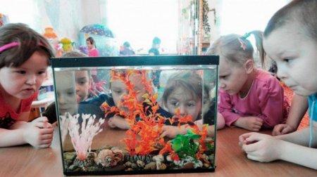 Дети у аквариума