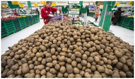 Продажа выращенного картофеля