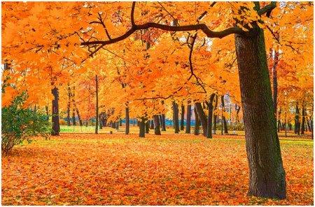 Осень на Кубани
