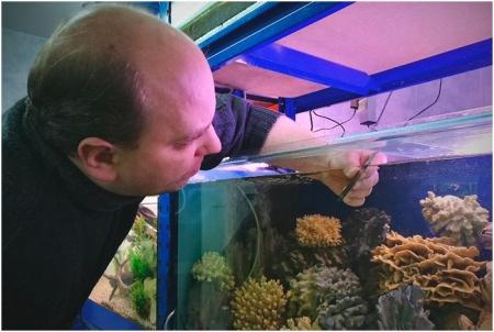 Аквариумист - человек осуществляющий уход за рыбами в аквариуме