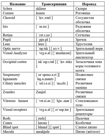 Table with new terms