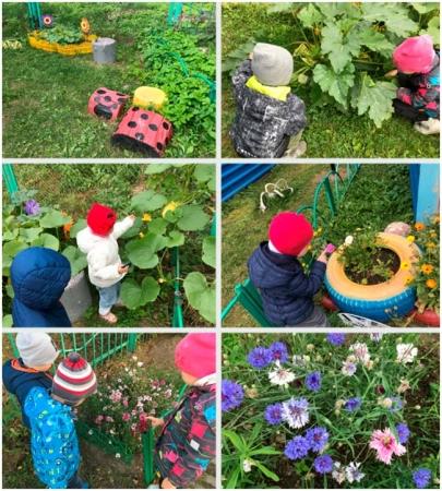 """Фотоальбом """"Мы садоводы"""""""