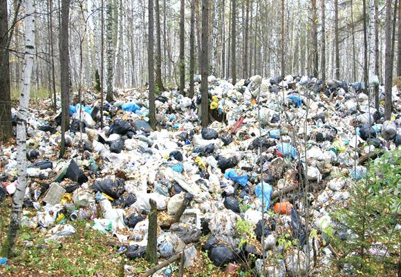 Свалка мусора в лесу